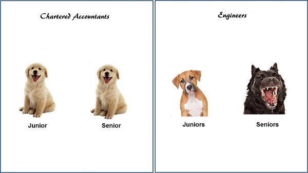 CA vs Engineer 1